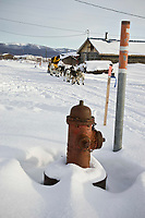 Mitch Seavey runs down the road passing a fire hydrant as he leaves Kaltag on Sunday morning during Iditarod 2008