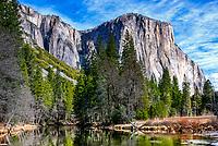3000 foot high El Capitan rises above the Merced River in Yosemite National Park.