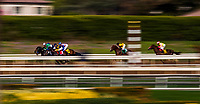 ARCADIA, CA - FEBRUARY 10: The field races down the backstretch in the San Vicente Stakes at Santa Anita Park on February 10, 2018 in Arcadia, California. (Photo by: Alex Evers/Eclipse Sportswire/Getty Images)