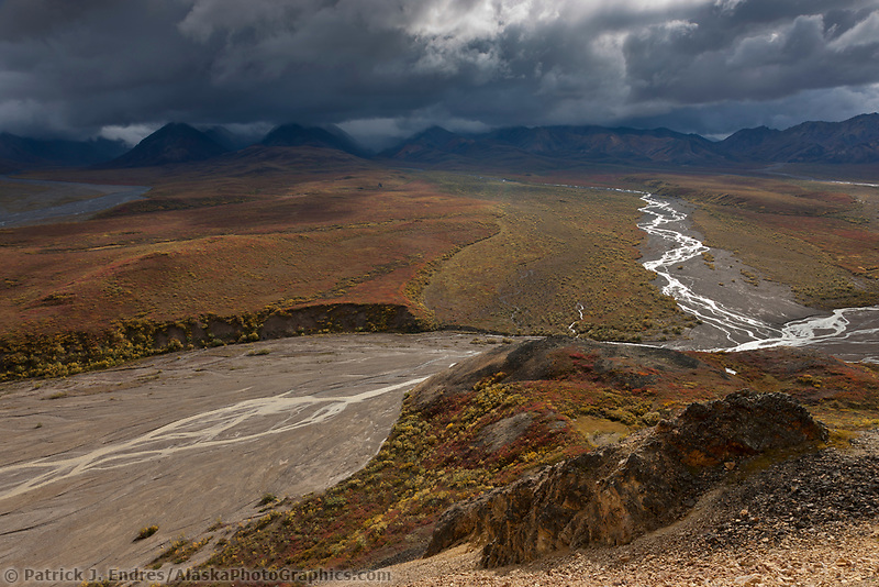 Autumn landscape of the colorful tundra and Alaska mountain range in Denali national park.