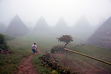 INDONESIA, Flores, Vinsensia Rujun and her baby bring home dinner through the fog in Wae Rebo Village