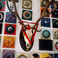 Close up of a set of antlers displayed amongst a selection of 300 mini paintings by Roger Nellens