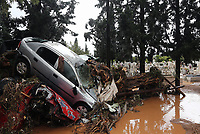 Pictured: A car sits on top of trees that have collapsed.<br />