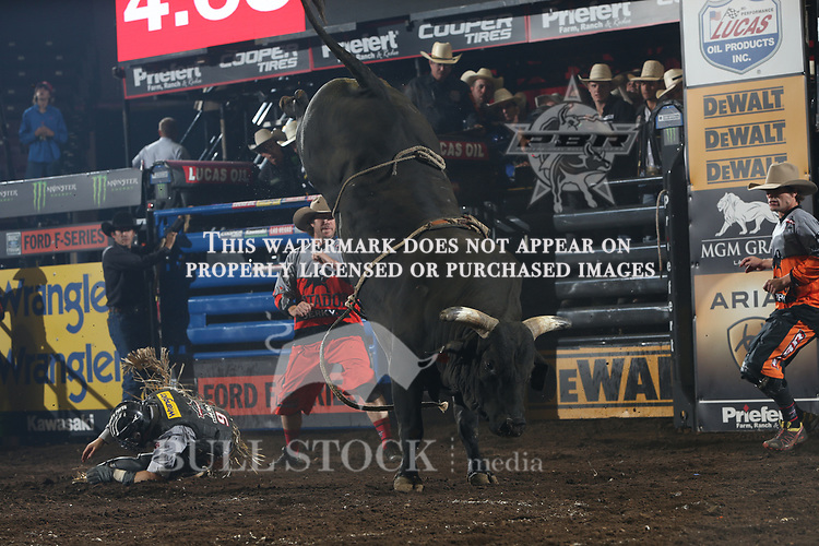 Troy Wilkinson attempts to ride Dakota Rodeo/CHad Berger/Clay Struve/Heald Pro Bulls's Element 79 during the first round of the Springfield Built Ford Tough series PBR. Photo by Andy Watson