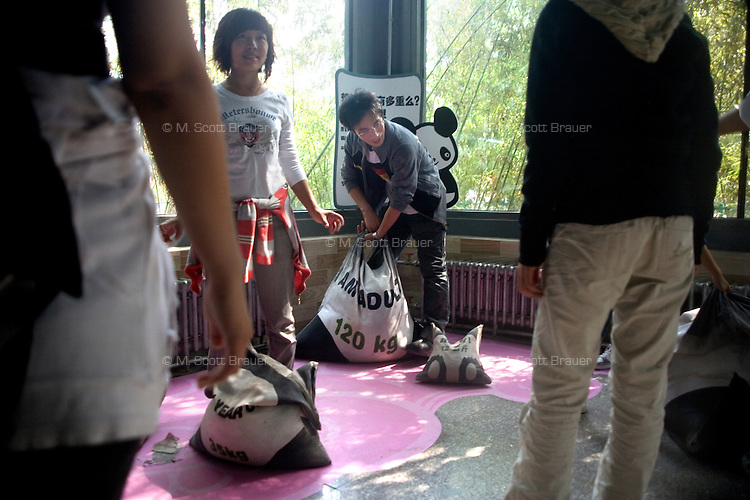 Visitors try to lift bags filled to approximate the weight of giant pandas at the Beijing Zoo in Beijing, China.