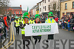 Castleisland Active Retirement group on parade for St Patrick on Monday.