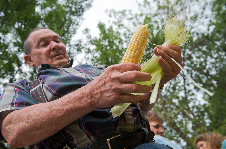 UNITED STATES - AUGUST 08: Darrell Hutzell, 80, shucks corn in Adel, Iowa, August 8, 2014, in preparation for the town's sweet corn festival. (Photo By Tom Williams/CQ Roll Call)