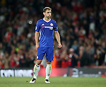 Chelsea's Branislav Ivanovic looks on dejected at the final whistle during the Premier League match at the Emirates Stadium, London. Picture date September 24th, 2016 Pic David Klein/Sportimage