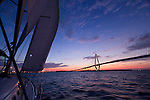 Sailboat Sailing Charleston Ravenel Bridge Cooper River