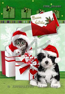 Isabella, CHRISTMAS ANIMALS, paintings,+dogs,++++,ITKE551680,#xa# Weihnachten, Navidad, illustrations, pinturas