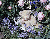 Carl, CUTE ANIMALS, teddies, photos(SWLA1492,#AC#)