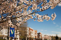 Birkdale Village, a mixed-use residential and retail center in Huntersville, NC, located 12 miles north of Charlotte, NC, is beautiful with its spring flowers in bloom. Considered an urban mixed-use community, Birkdale Village has restaurants, stores, cafes, a movie theater, single-family houses, as well as apartments and condos built above retail.