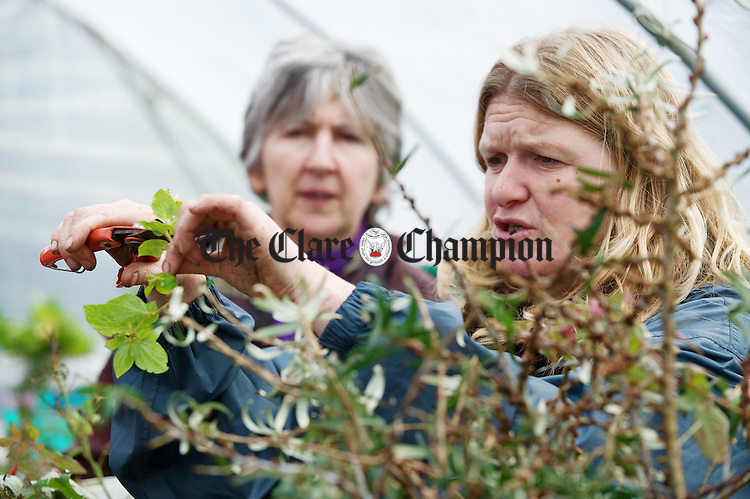 Tutor Biddy Hedderman demonstrating plant cutting, watched by Sally Aitken, in a  gardening class preparing for the Community Garden at the West Clare Resource Centre at Miltown Malbay. Photograph by John Kelly.