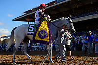DEL MAR, CA - NOVEMBER 04: John Velazquez, aboard World Approval #5, won the Breeders' Cup Mile race on Day 2 of the 2017 Breeders' Cup World Championships at Del Mar Racing Club on November 4, 2017 in Del Mar, California. (Photo by Jamey Price/Eclipse Sportswire/Breeders Cup)