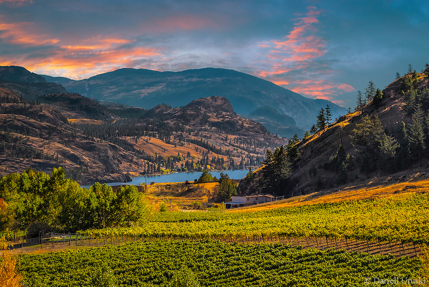 Fine Art Scenic of mountain vineyards situated in the Okanagan Valley of British Columbia, Canada.
