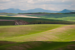 Clouds over the rolling hills of Washington's Palouse in spring.
