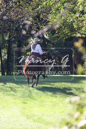 A cowboy riding a Quarter horse