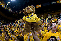CAL fan holds up CAL teddy bear before the game against Arizona at Haas Pavilion in Berkeley, California on February 2nd, 2012.  Arizona defeated California, 78-74.