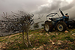 A settler uses a tractor to prepare a piece of land for planting, at the unauthorized Israeli outpost of Givot Olam, West Bank.