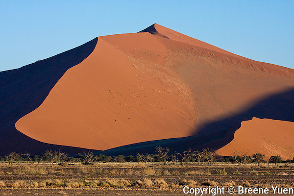 Red Dunes of Soussusvlei, Namibia
