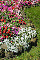 Flower gardens are rimmed with rock at the windmill in Gaolden Gate Park in  San FRancisco, California
