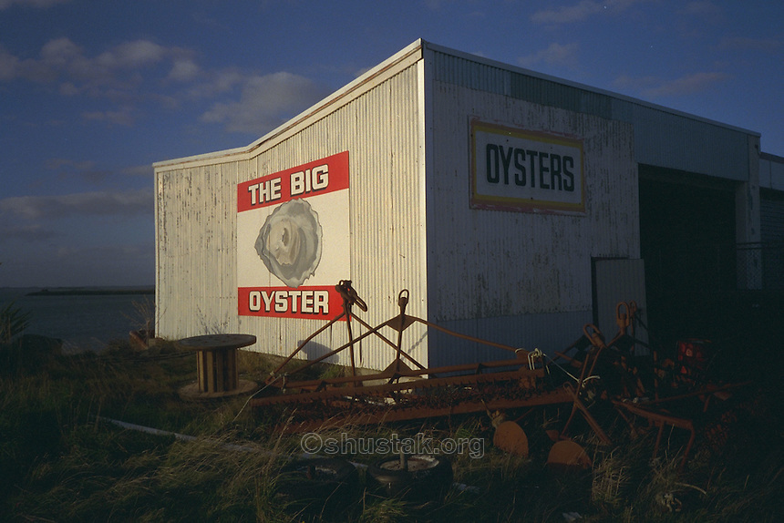 The Big Oyster Restaurant, 99 Ocean Beach Road, Bluff, Southland, New Zealand.