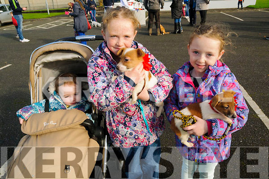 Moyvane Village Fesatival; Attending the Moyvane Village Festival on Sunday last were  Aine Caoimhe & Aooibhinn Lenihan with their minature Jack Russells Rascal & Maise.
