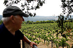 St. Helena vintner Fulton Mather runs David Fulton Winery, one of the only all-Petitie Syrah vineyards in California, stands near youngest vine, which were planted in the 1970s, on Monday, August 31, 2009. Mather grew up on the property picking grapes, in which his great-grandfather purchased in 1860.