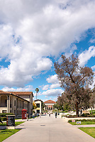 Thorne Hall as seen from Occidental College's Johnson Student Center (JSC) quad on March 8, 2019.<br /> (Photo by Marc Campos, Occidental College Photographer)