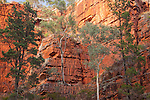 Alligator Gorge, Mount Remarkable National Park, South Australia, Australia