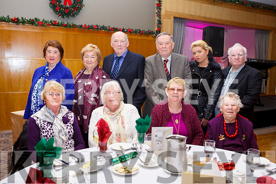 Enjoying the Ballyduff Active Retirement Christmas party at the Ballyroe Heights Hotel on Sunday last. Seated l-r, Sheila O'Carroll, Peggy Harrington, Mary Griffin and Margaret McCarthy. Back l-r, Ann, Bridie, Mike Joe & Sean Quinlan, Christina and Charlie Doherty.