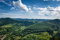 Deutschland, Rheinland-Pfalz, Suedliche Weinstrasse, Annweiler am Trifels: Blick in den angrenzenden Pfaelzer Wald | Germany, Rhineland-Palatinate, Southern Wine Route, Annweiler am Trifels: view into The Palatinate Forest