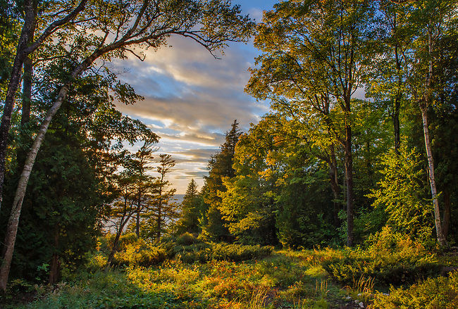 This forest opening sits behind the Clearing Lodge and looks west to the setting sun, Ellison Bay, Door County, Wisconsin