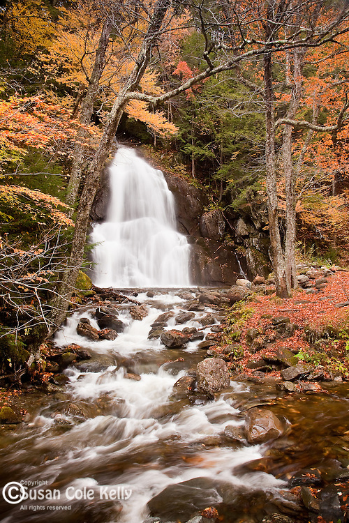 Fall foliage at Moss Glen Falls in the Green Mountain National Forest, Granville, VT, USA
