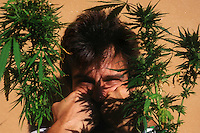 Uso di Marijuana. Use of Marijuana...
