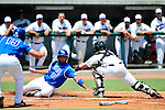 2011 M DII Baseball