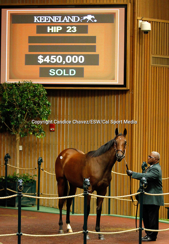 September 14, 2015: Hip 23 Medaglia d'oro - Weekend Whim consigned by Taylor Made Sales.  Candice Chavez/ESW/CSM