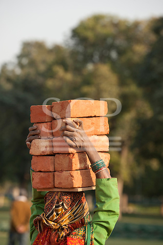 Delhi, India. Woman labourer carrying 10 ten bricks on her head.