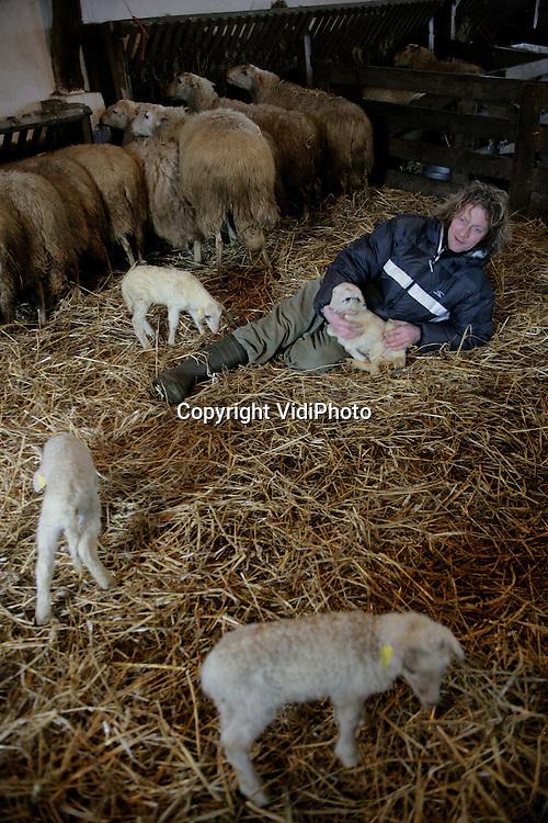 Foto: VidiPhoto..EDE - Een korte adempauze voor schaapherder Henk van de Brandhof. De baas van de schaapskudde op de Ginkelse Hei zit midden in een geboortegolf. Op dit moment zijn er al 40 lammetjes geboren. De komende vier weken worden er nog eens 100 verwacht. Dat betekent weinig tot geen nachtrust voor de jonge herder.