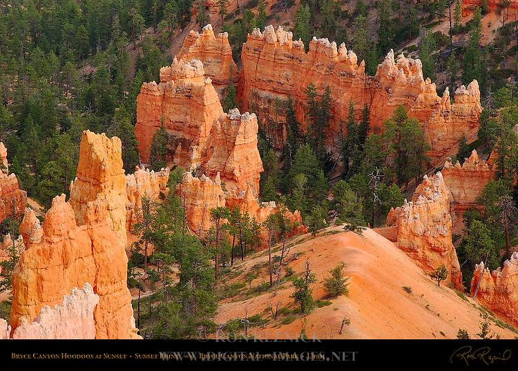Bryce Canyon Hoodoos at Sunset, Sunset Point, Bryce Canyon National Park, Utah