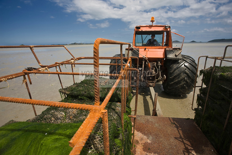 Europe/France/Bretagne/22/Côtes d'Armor/ Paimpol: Départ pour les parcs à huitres  en tracteur -Entreprise: André Arin