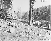 Original caption: Yellow pine logs on R.R. car.  H&amp;H sale area 1925.<br /> Hallack &amp; Howard Lumber Co.  Carson National Forest, NM  circa 1925