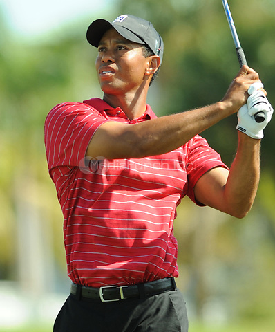 MIAMI, FL - MAY 29: FILE PHOTOS - BEST OF TIGER WOODS - Memorial day weekend, Tiger woods Arrested on DWI on May 29, 2016 in Miami, Florida. <br />