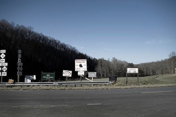 November 23, 2008. Ashe County, NC.. The Christmas tree industry in Ashe County.. Multiple signs point the way to the many X-Mas tree farms in Ashe County, which is considered the tree capitol of North Carolina, which is the second highest tree producing state in the country, after Oregon, but grosses more cash than any other state.. Over 2 million trees are exported from Ashe County alone, most being shipped in the week leading up to Thanksgiving, which is the busiest for the industry.