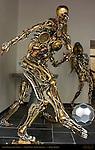 Soccer Player and Fe Nomena, Dirk de Wulf, Kezanti Gallery, Ezelstraat, Bruges, Brugge, Belgium