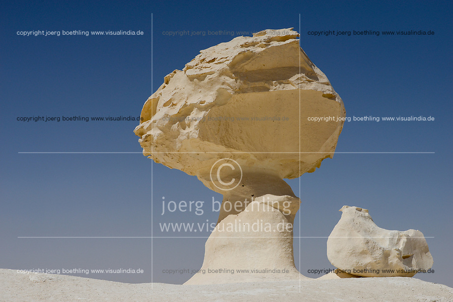 EGYPT, Farafra, Nationalpark White Desert , mushroom like chalk rocks shaped by wind and sand erosion, sculpture called chicken and tree / AEGYPTEN, Farafra, Nationalpark Weisse Wueste, durch Wind und Sand geformte Kalkfelsen