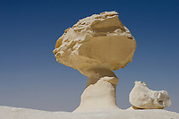 EGYPT, Farafra, Nationalpark White Desert , mushroom chalk rocks shaped by wind and sand erosion/ AEGYPTEN, Farafra, Nationalpark Weisse Wueste