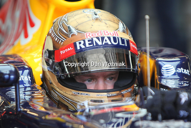 Sebastian Vettel (1) driver of the Red Bull Racing Renault sets in his car before the Formula 1 United States Grand Prix race at the Circuit of the Americas race track in Austin,Texas. ...