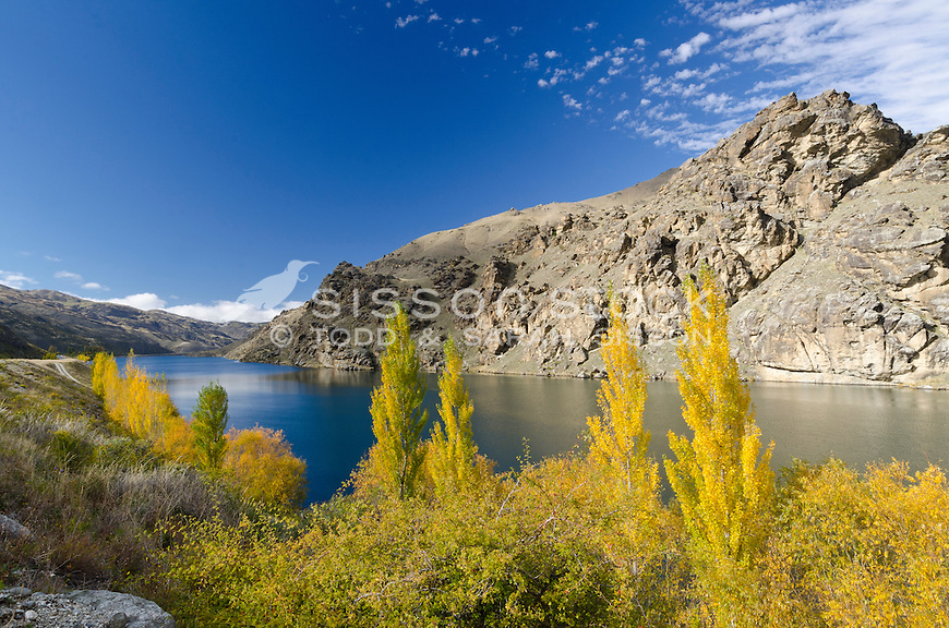Autumn poplars line one side of the Cromwell Gorge on a blue sky day, Central Otago, South Island, New Zealand - stock photo, canvas, fine art print