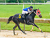 Giant Fu Peg winning at Delaware Park on 6/16/16